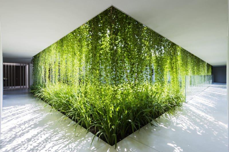 Interiors designs of the Future