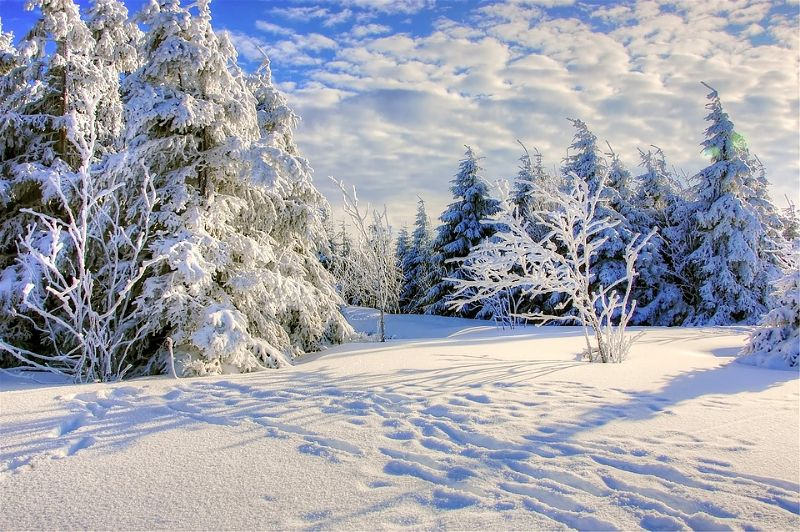 Silverthorne Colorado Weather